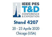 Borri al IEEE PES 2020
